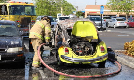 Vehicle catches fire in grocery store parking lot in Atwater
