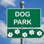 Livingston Plans For Future Dog Park