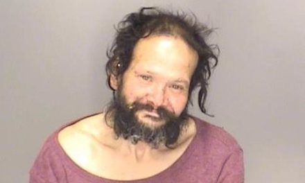 Merced County's Theft Suspects