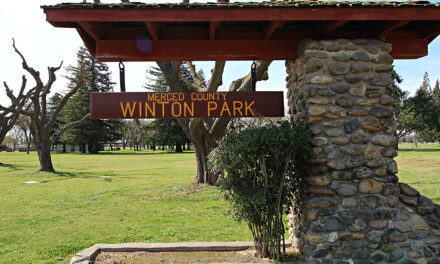 San Francisco 49ers to sponsor flag football league at Winton Park