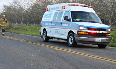 Stolen vehicle crashes, 7-year-old airlifted at Winton Park