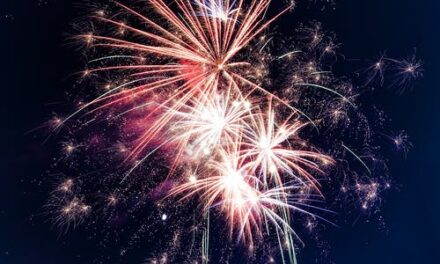Livingston eyes fireworks show, seeks public input