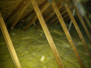 attic restoration and cleanout clio