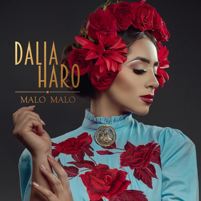 El nuevo sencillo de Dalia Haro que está arrasando en Spotify