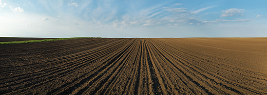 Property Taxes for Nebraska Landowners