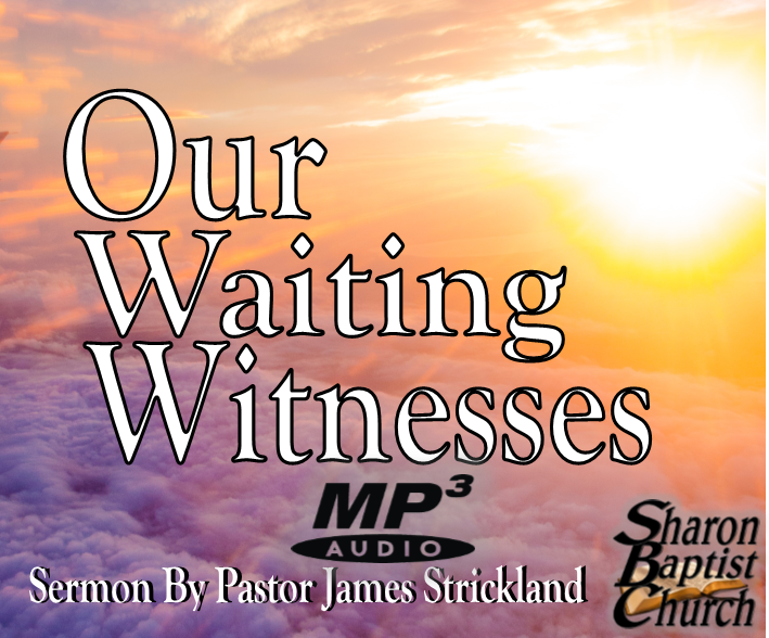 Our Waiting Witnesses AUDIO sermon by James Strickland