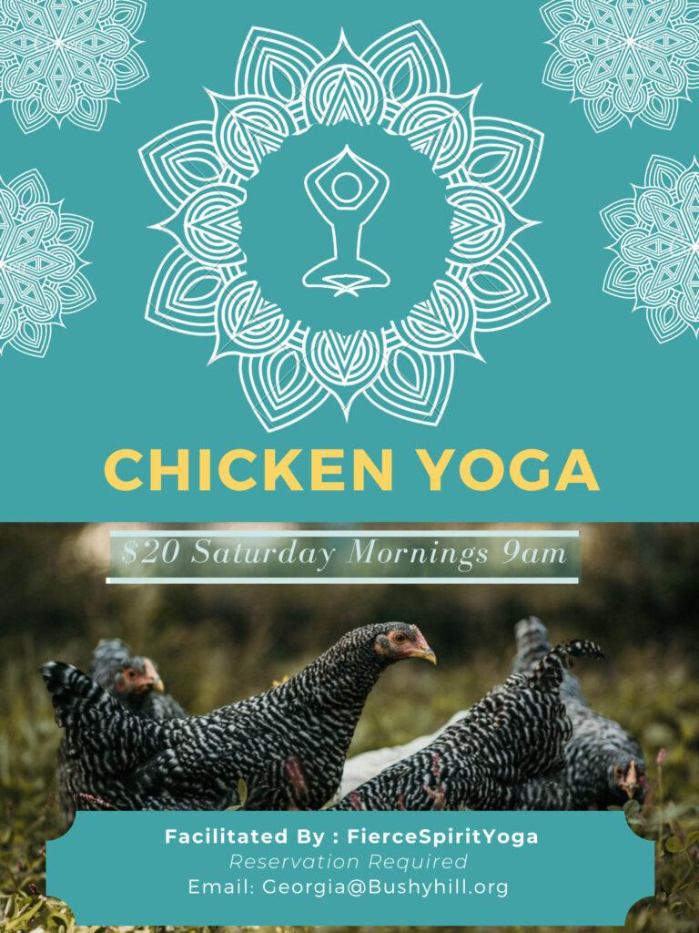Chicken Yoga