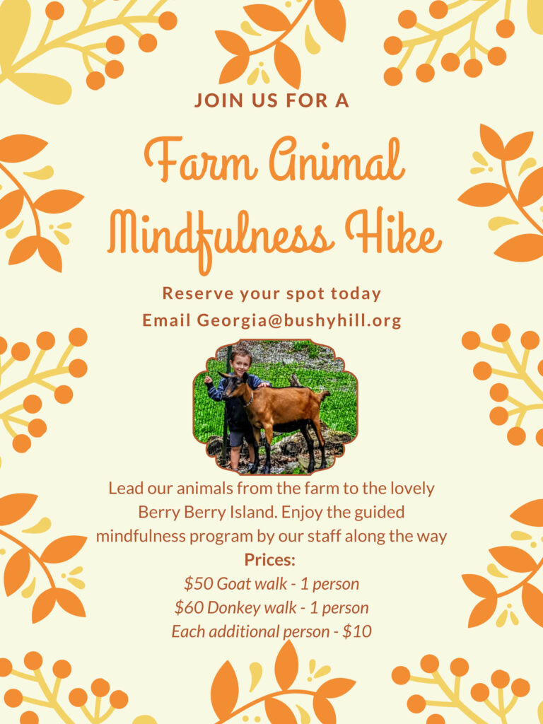 Farm Animal Mindfulness Hike