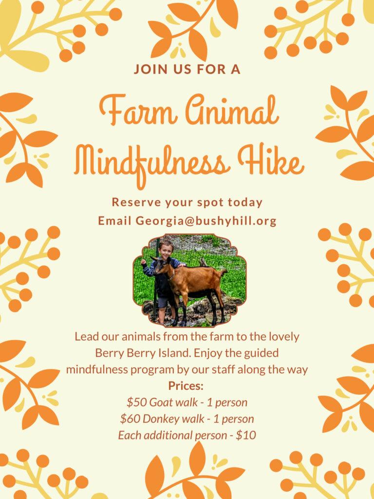 Farm Animal Mindfulness Hike