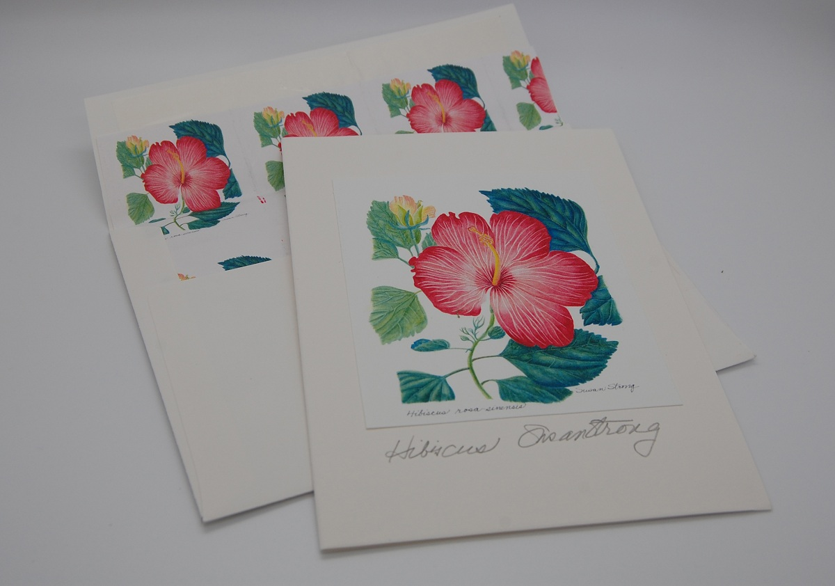 Notecard Red Hibiscus
