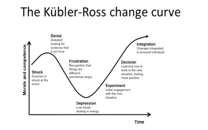 Coronavirus and the Change Curve