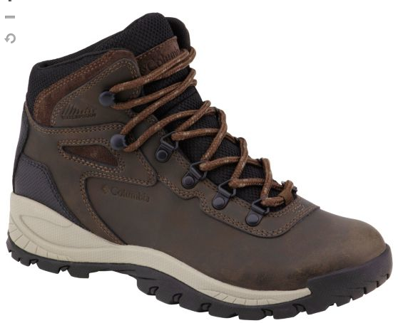 Women's Newton Ridge brown