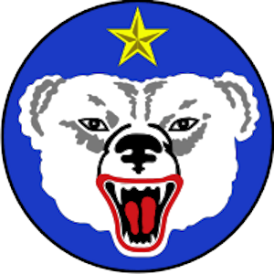 us army alaska bear patch
