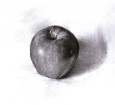 pencil drawing of an apple on a white background