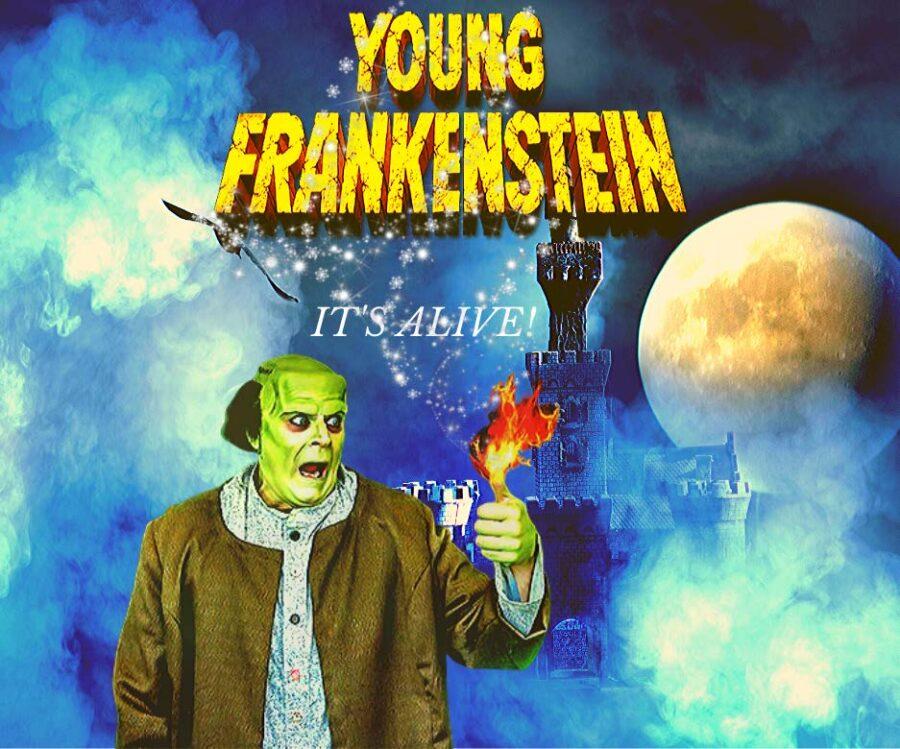 young frankenstein banner
