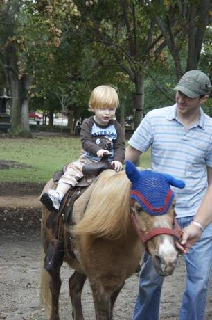 Pony rides at the Charleston Farmers Market Charleston Sc