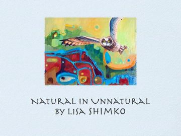Charleston Sc Artist Lisa Shimko