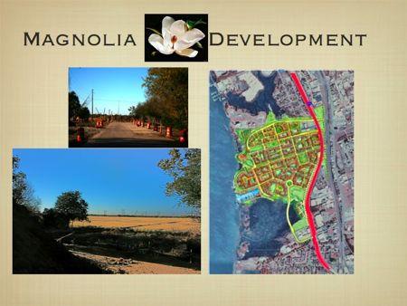 magnolia, Change is finally underway…