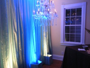 An example of lighting and draping by TEC and Blossom's Events
