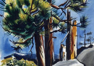 art_eba_watr_tahoe-pines-53_923x1225