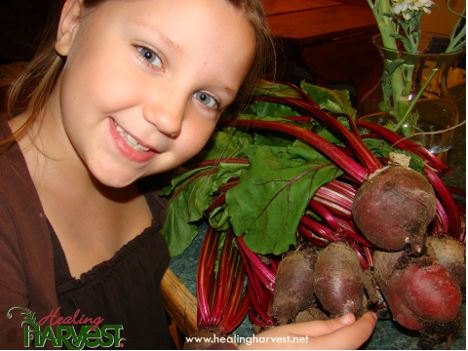 Beets In A GrowBox