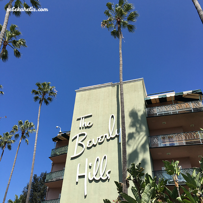 beverly hills, california, beverly hills hotel, palm tree