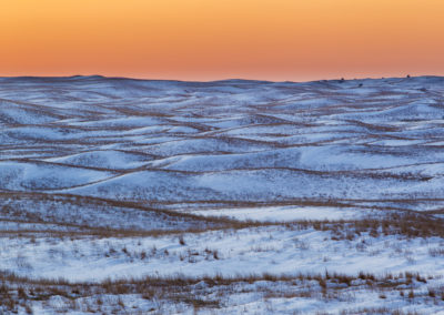 Sharp-tailed Grouse Habitat