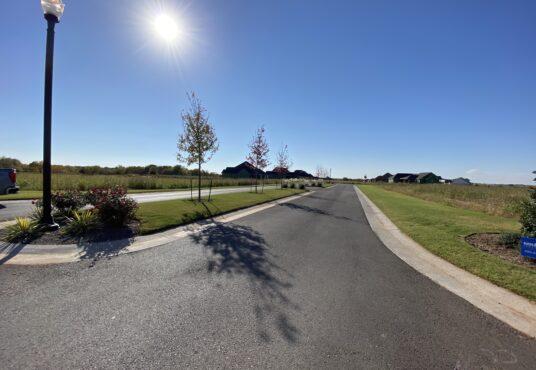 Ashley Oaks Entrance Drive