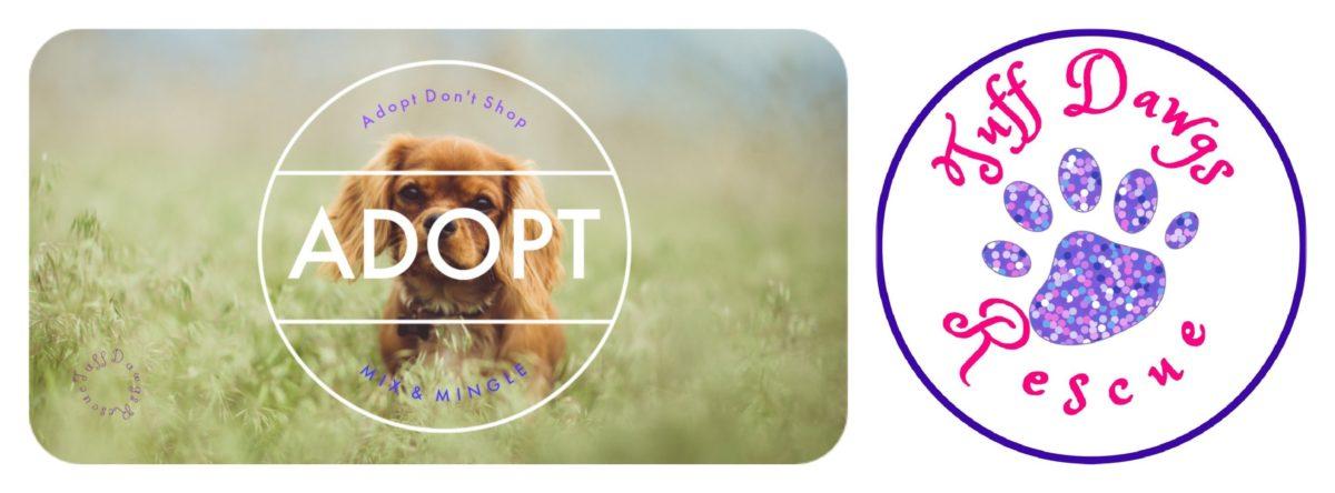 Tuff Dawgs Rescue Inc Non-Profit