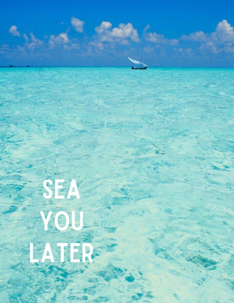 sea you later ocean photo wall art free printable