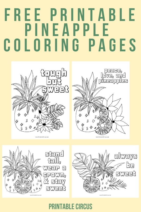 Free printable pineapple coloring pages: a FREE 4-page PDF with tropical pineapple coloring sheets just waiting to download, print, and color. Great for teenagers and adults alike!