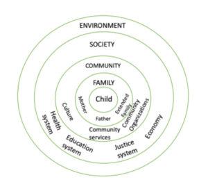 Family Justice Paradigm Shift