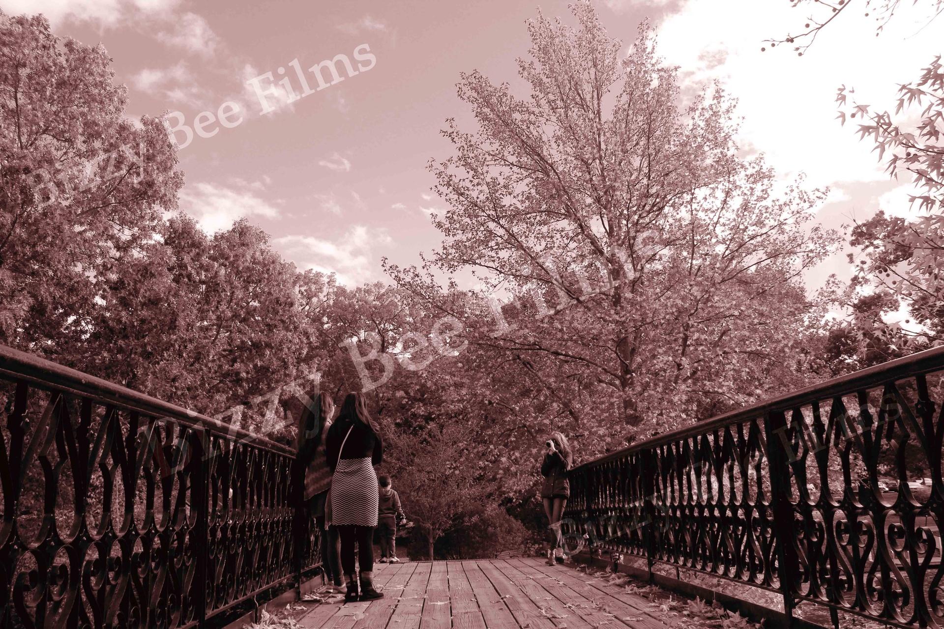 Photography on RWP Bridge