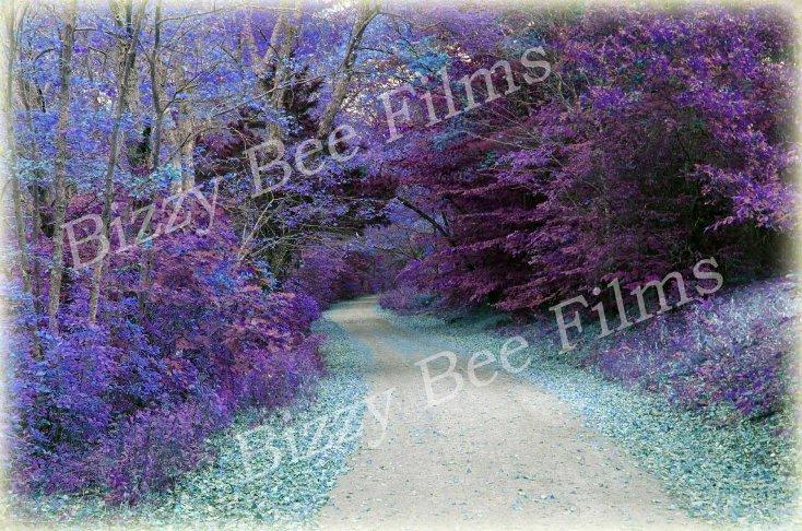 Purple ad blue trees