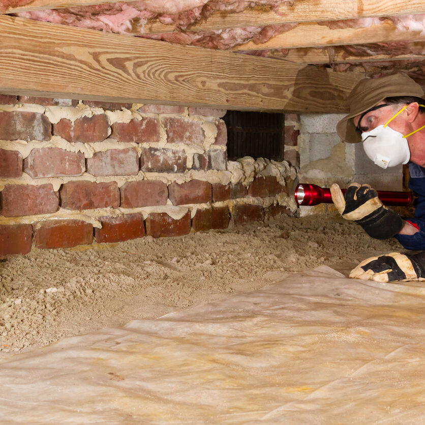 Termite inspector in residential crawl space inspects a foundation for termites.