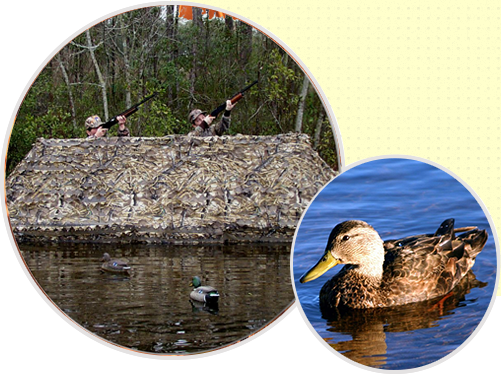 One of our duck boat blinds in use