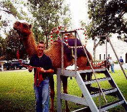 Camel Rides rentals