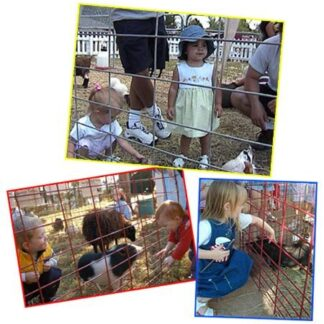 Petting zoo rental