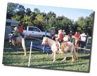 Poney carousel rides