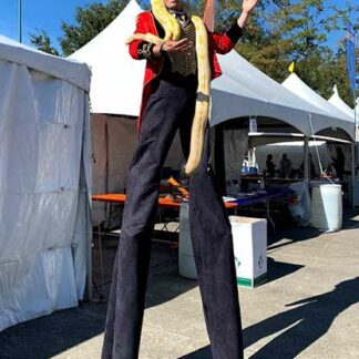 ringmaster stilt walker walking