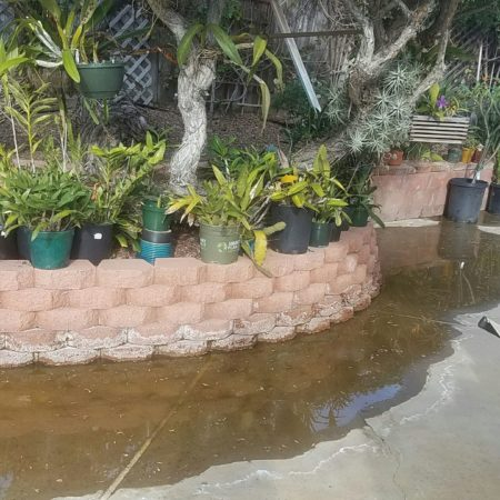 Irrigation & slab leaks can often present as puddles that don't go away. Leak detection is easy & inexpensive.