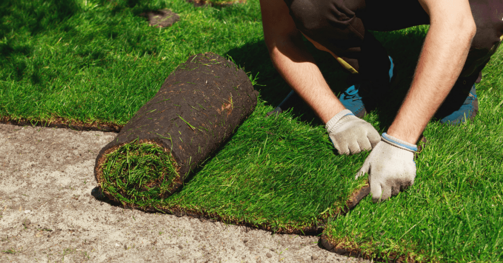 Landscaper installing sod onto property.