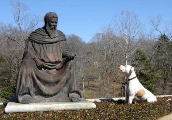 Gus and St Francis