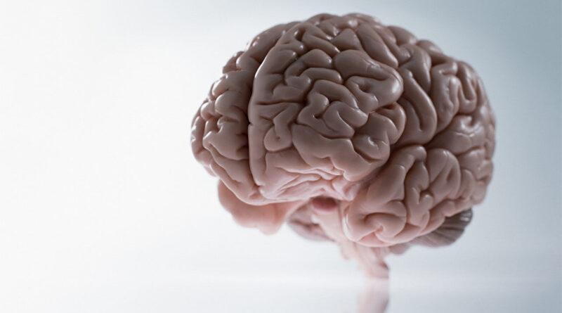 Puasa beri manfaat kesihatan pada otak