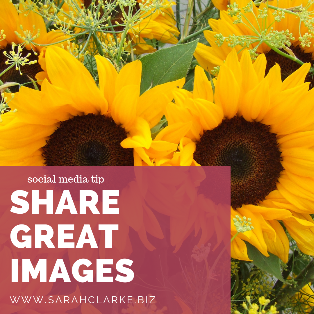 social media tip share great images