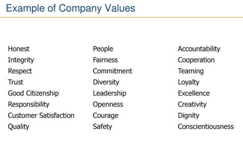 Examples of Company Values