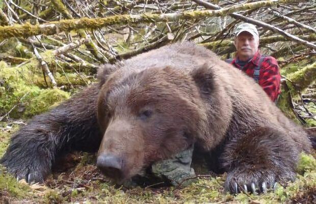 brown-bear-hunting2-1