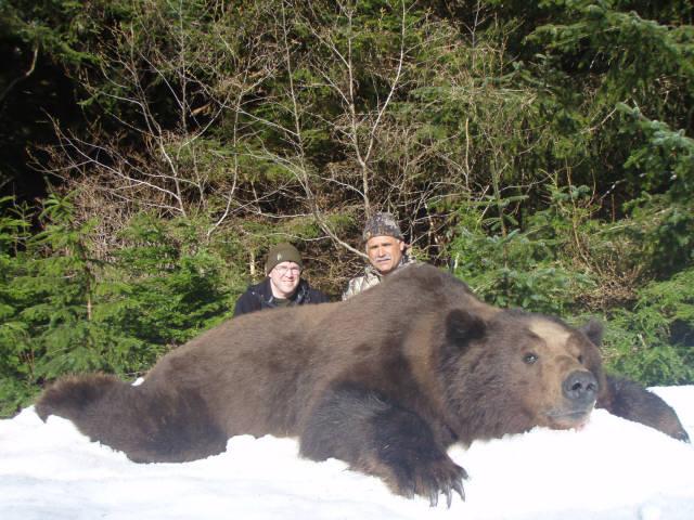 brown bear hunting5