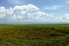 Salt-Cay-Little-Bluff-towards-North-beach.-Windmills-Planation