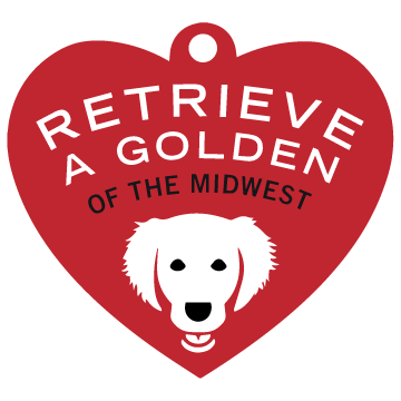 Retrieve a Golden of the Midwest